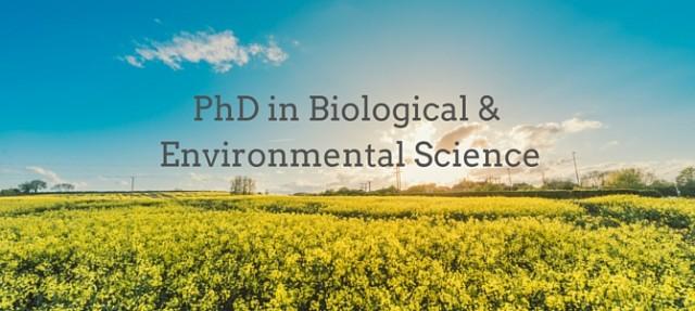 UCD & Teagasc: choosing my PhD in Biological and Environmental Science