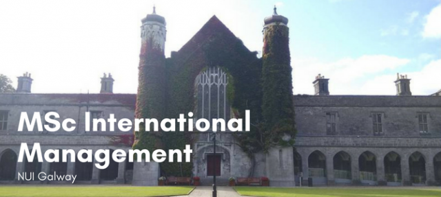 MSc International Management at NUI Galway