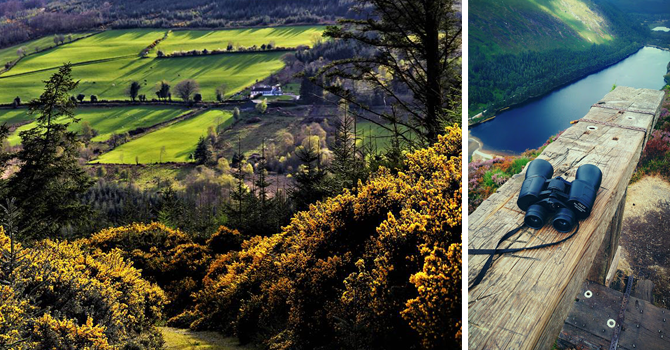 a view of a lush country garden and a view from the top of a wooden boardwalk in Glendalough with binoculars and lake in shot.