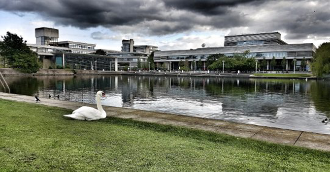 a swan sits in front of a large lake in the foreground and the concrete concourse sprawls in the background.