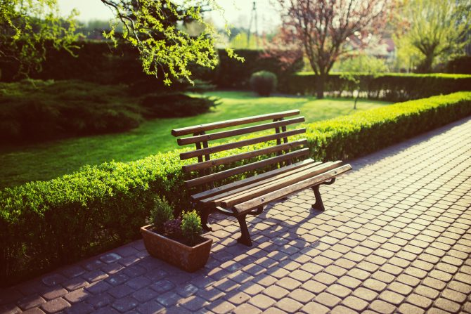 Park bench in landscaped gardens
