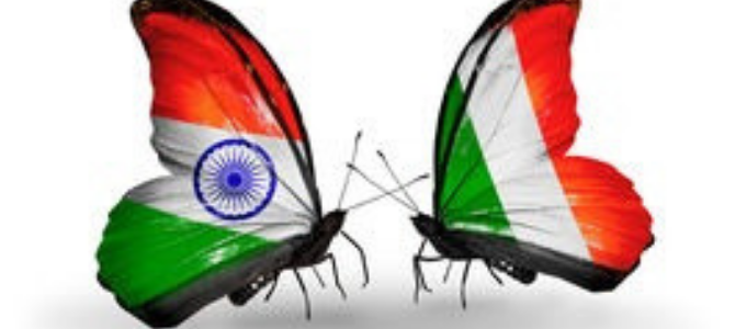Butterflies with the flags of India and Ireland on their wings
