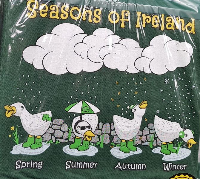 Illustration depicting ducks standing in rain and stating that it is spring, summer , autumn and winter