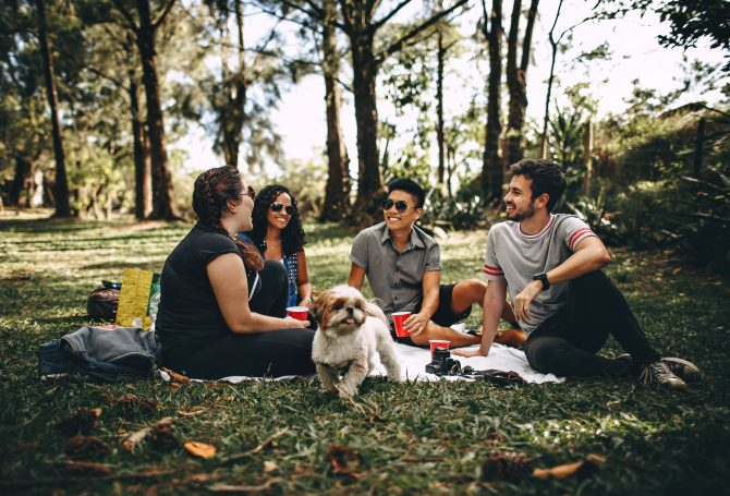 Group of peopple having a picnic with a white dog